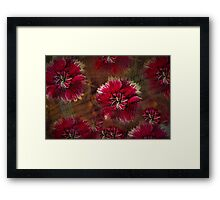 Burgundy flower design Framed Print