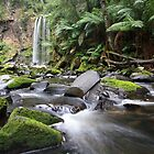 Hopetoun Falls, Otway Ranges, Australia by Michael Boniwell