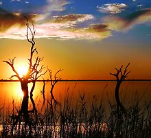 Lake Bonney Sunset by Annette Blattman