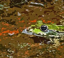 """Chives""  The Star Frog summer in all its forms 43  paint 2   (c)(h) by Olao-Olavia / Okaio Créations fz 1000 by okaio caillaud olivier"