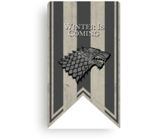House Stark: Winter is Coming Canvas Print