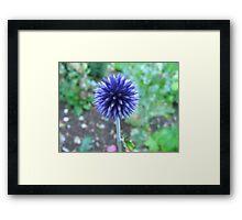 Blue Spike Framed Print
