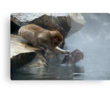 Monkey Day Spa Metal Print