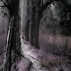 Path to the Asylum  by Jason Lee Jodoin