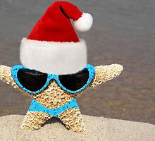 Starfish Santa by Maria Dryfhout