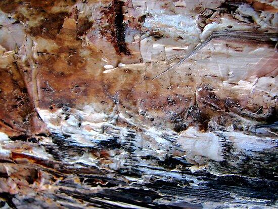 Waves crashing on Rocks by Kathie Nichols