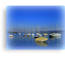 The Lake of Zurich Canvas Print