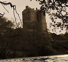 Neidpath Castle 4 by Roddy Atkinson