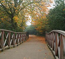 The Bridge in the Park  by PhotogeniquE IPA