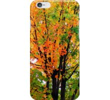 Leaves Changing Colors iPhone Case/Skin
