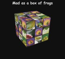 Mad as a box of frogs - darks by Mel Brackstone