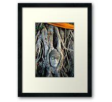 Buddha Face In Tree Framed Print