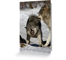 Back off! - Timber Wolf Greeting Card