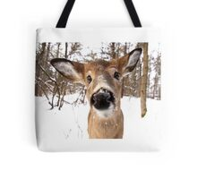 Nosey - White-tailed Deer Tote Bag