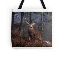 Buck on ridge - White-tailed Deer Tote Bag
