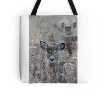 In the Meadow - White-tailed deer Tote Bag
