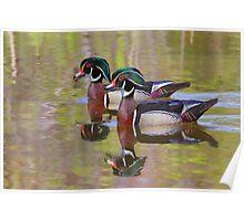 Twin Beaks - Wood Ducks Poster