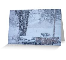 1959 Ford Fairlane on a snowy day... Greeting Card