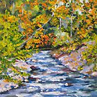 Rapids  by Daniel Grant