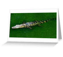 Floating Alligator Greeting Card
