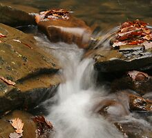 Waterfall Rocks by mtamer