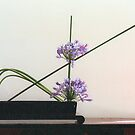 Ikebana-040 by Baiko
