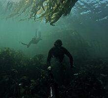 Navy Seals by coastalbrandon