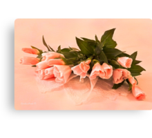 Peach Godetia's And Lace  Canvas Print