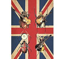 Meet the Beetles (Union Jack Option) Photographic Print