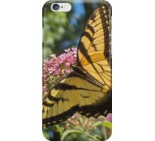 Eastern Tiger Swallowtail Butterfly Closeup Photography  iPhone Case/Skin