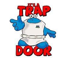 It's a Trap..... DOOR by allymcspong