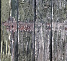 Grunge old wood background by Ron Zmiri