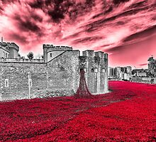 Poppies At The Tower - the very sky weeps by Graham Prentice
