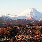 Mount Doom by jillandian
