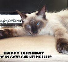 Happy Birthday  by pault55