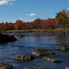 Autumn on the Union River by yukonjack
