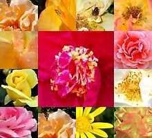 Flower Mosaic by Shara