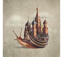 The Snail's Daydream Photographic Print