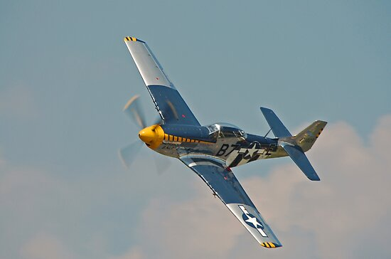 P-51D Mustang  by Andy Mueller