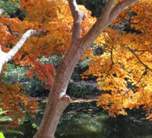 Golden Pond Sticker