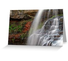 The Falls Of Brandywine Greeting Card