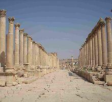 Roman columns lining a street, Jerash, Jordan by Hermann Hanekom