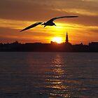 Charleston Sunset by Wendy Mogul