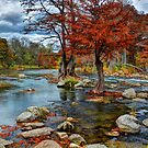 Guadalupe In The Fall by venny