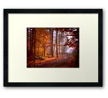 Foggy Fall wonder land Framed Print