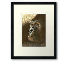 Gorilla in color pencil Framed Print