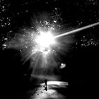 The Light by Zoltan