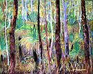 Grass Trees Cunningham's Gap Queensland [Pastel] by Virginia McGowan