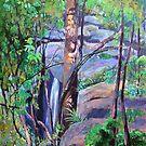 Waterfall St.Bernards on the Mountain by Virginia McGowan