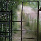 Rusty Gate by Melody Shanahan-Kluth